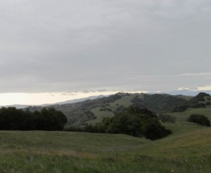 Henry W. Coe State Park Morgan Hill Rolling Hills