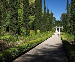 Montalvo Arts Center Gardens